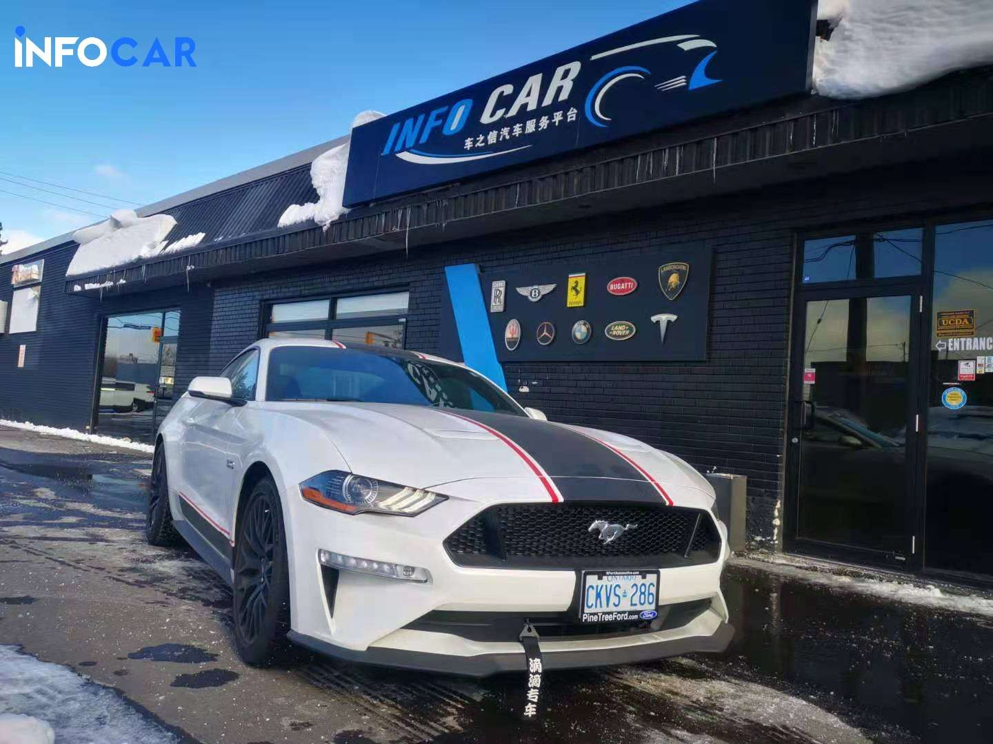 2019 Ford Mustang GT premium - INFOCAR - Toronto's Most Comprehensive New and Used Auto Trading Platform