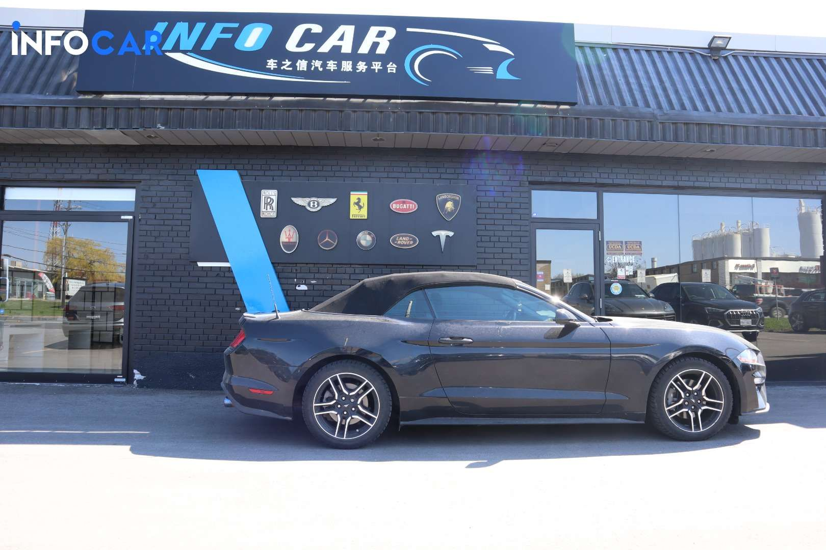 2019 Ford Mustang ECO CONVERTIBLE - INFOCAR - Toronto's Most Comprehensive New and Used Auto Trading Platform