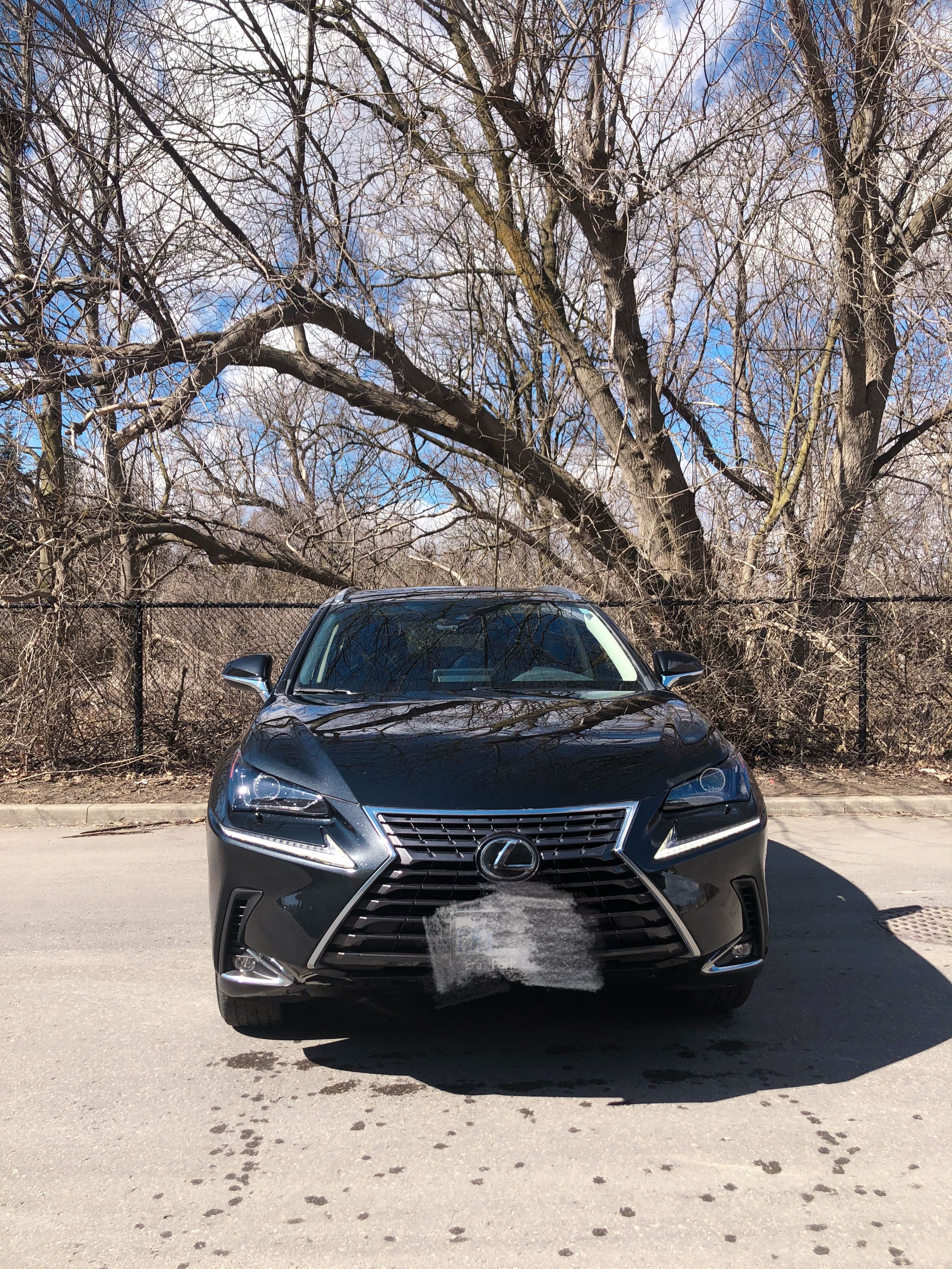 2020 Lexus NX 300 null - INFOCAR - Toronto's Most Comprehensive New and Used Auto Trading Platform